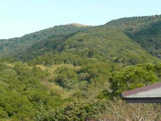 中正山雲海2.MOV