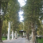 A beautiful park in the centre of all the bustle