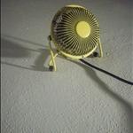The fan!