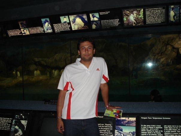 Penguine Park in Jurong