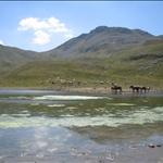 lago della duchessa con rik - 31.08.08 (51).jpg