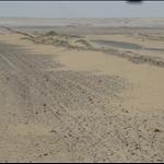 woestijntocht Siwa