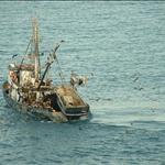 Fishing boat,Mazatlan