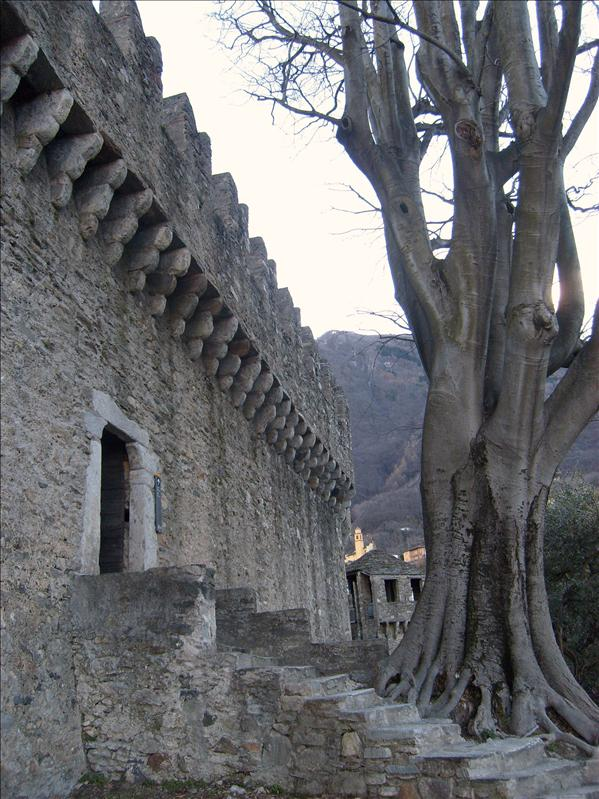 castle•Bellinzona•2009
