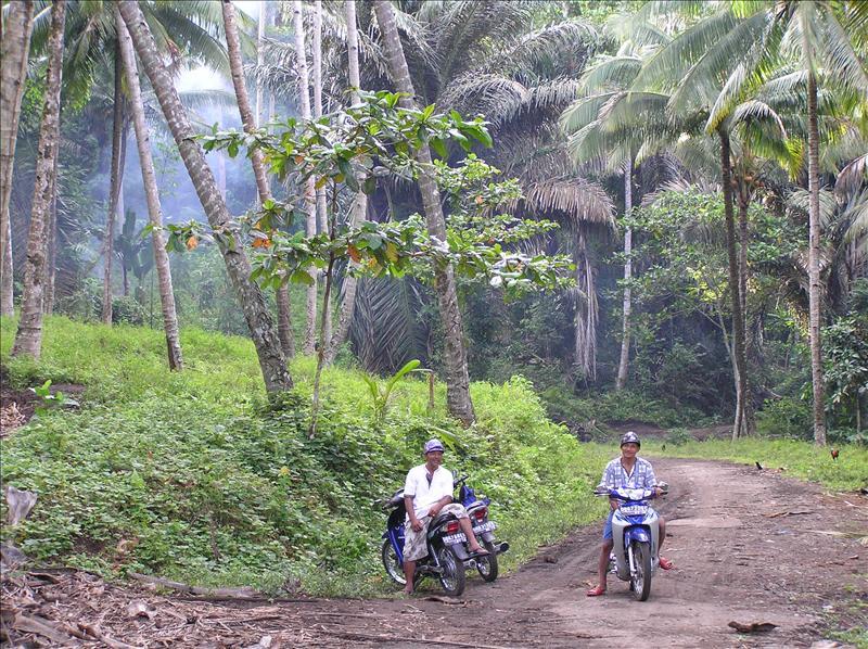 Ojek-Motorcycle taxi