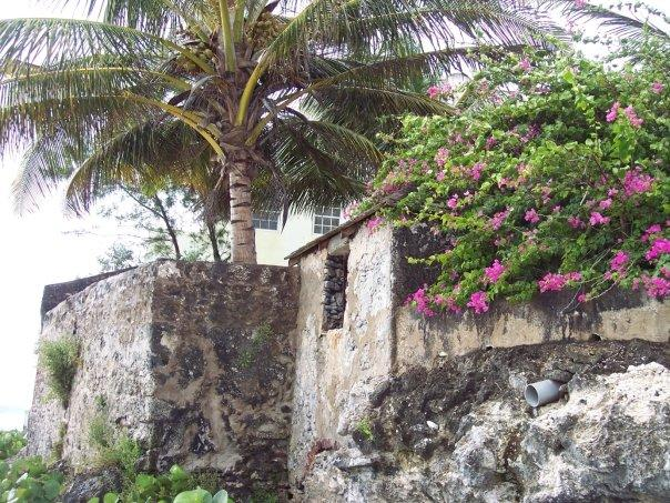 An old wall stand protecting it. Coral stone, brick, concrete and motor, aged by nature, and growing things.