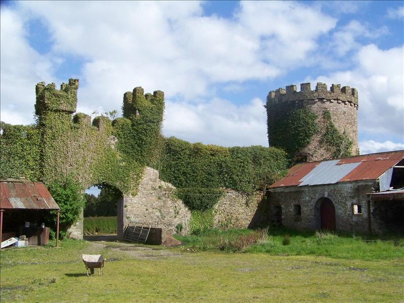 Dromagh Castle