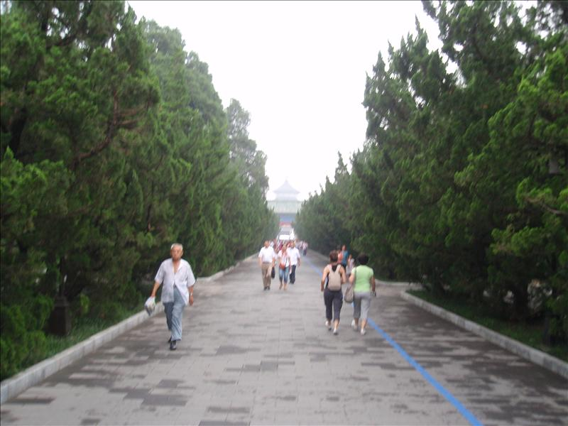 In the grounds of the Temple of Heaven (Note blue marathon line)