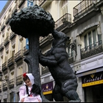 The bear and the strawberry tree, symbol of Madrid.