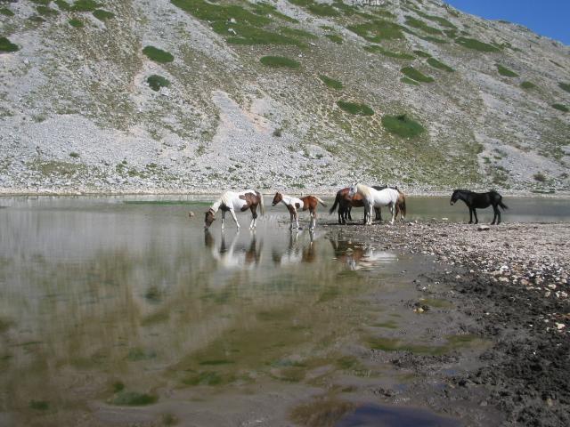 lago della duchessa con rik - 31.08.08 (47).jpg