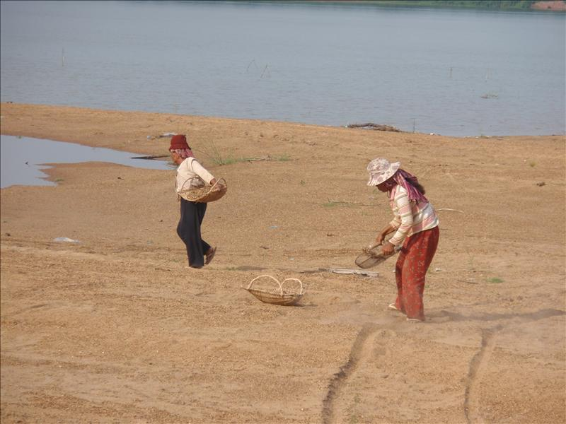 Locals sifting sand