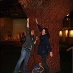 Grabbing the Branches.JPG