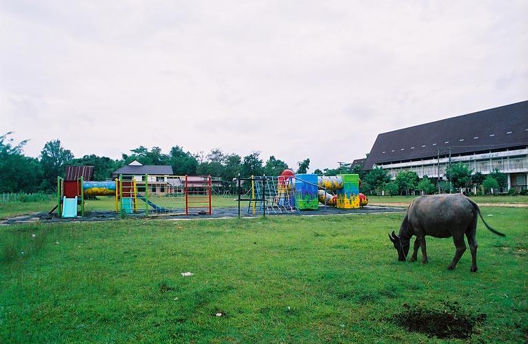 area Wat Song Kron