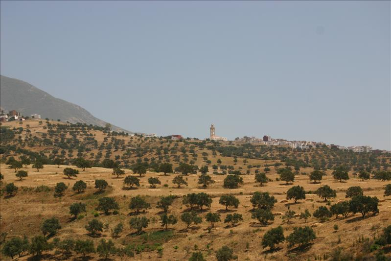 Minaret in the hills