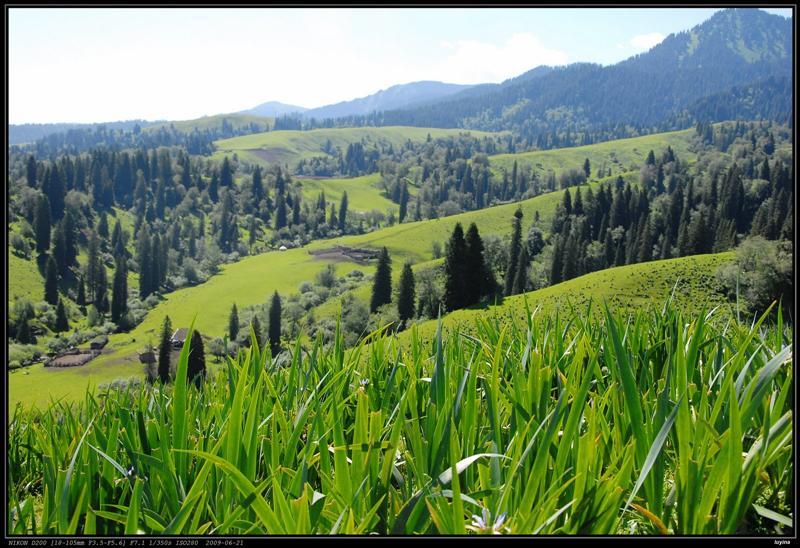 那拉提 春秋牧场 观景台