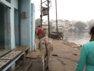Walking to the Daiji Bridge, Udaipur