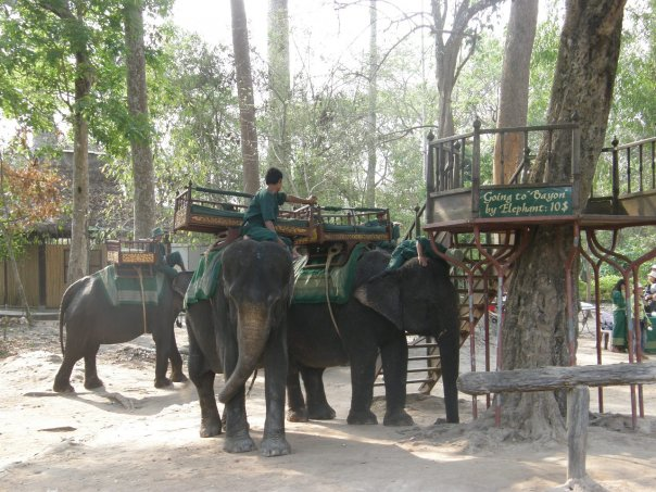 Elephant ride to the Bayon temple.