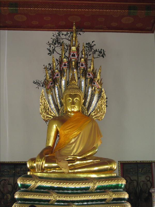 Mr. Buddha again...