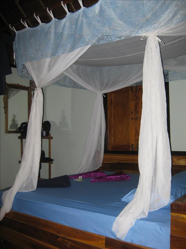 Mosquito net required