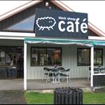 Cozy café on our way to Paihia