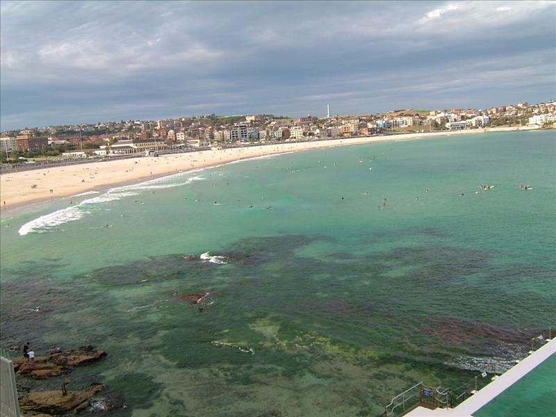 bondi beach from top