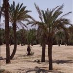 Aqaba  © Fernando López