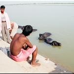 Varanasi  ( Benares )  oct2000