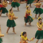 Hilo - Hula at the Merrie Monarch Opening Event