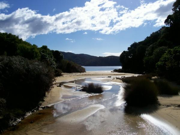 Abel Tasman National Park -   During a stop at one of the hundreds of small secluded beaches, this one is called .Anchorage beach.