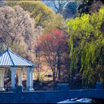 piedmont parks