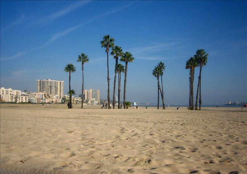 蓝天下的沙滩