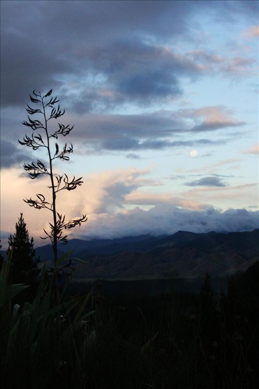 Sunset - near Nelson.
