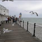 Brighton July 2009