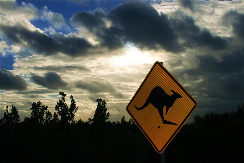 Roo sign - Nambung National Park.