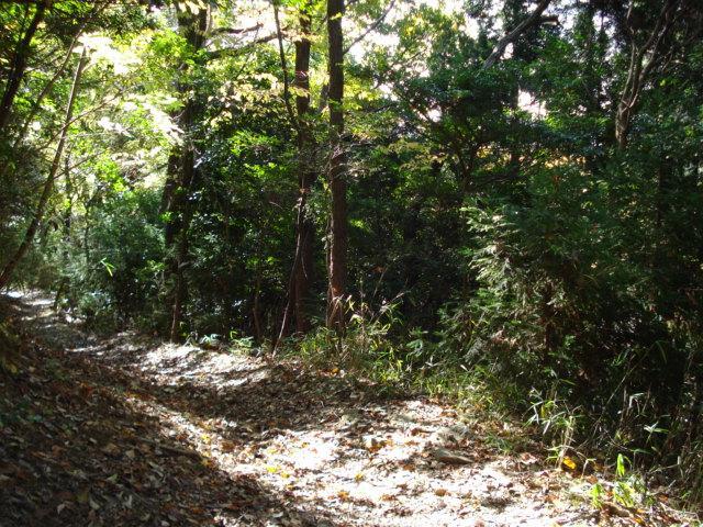 Hiking road