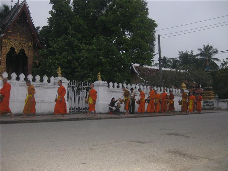 Morning Almsgiving in Luang Prabang Prabang, For them the food given will be the only meal of the day.