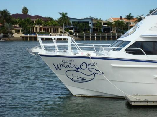Steve Irwin's Whale Watching Boat.