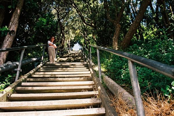 Steps to Durie Hill, Wanganui
