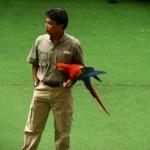 BirdPark-14.jpg
