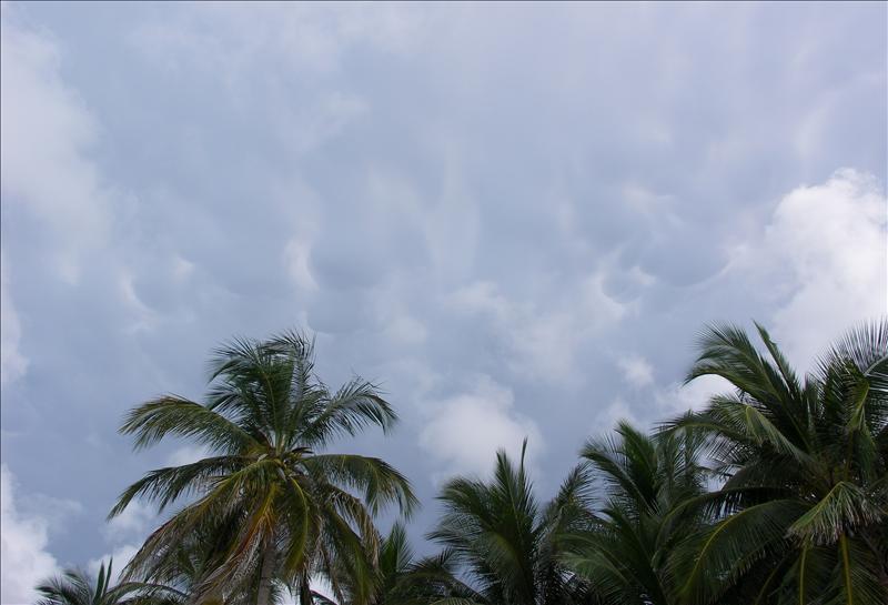 Curious cloud
