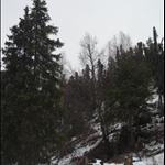 snow day 018.JPG