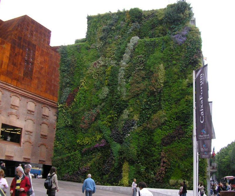 """Green wall"""