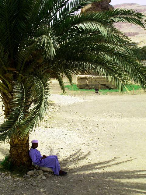 Shade (Egypt)