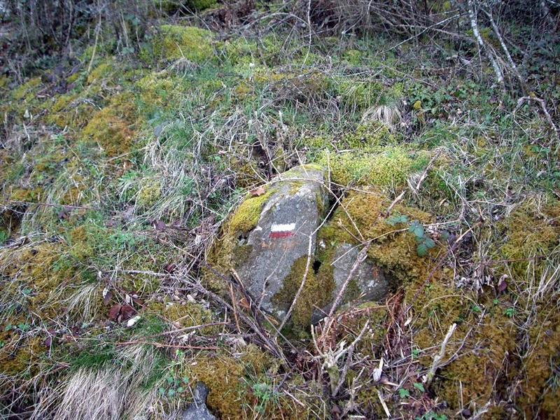 石頭上的顏色是路標