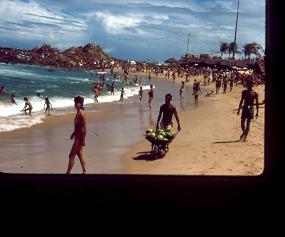 Playa con coquero