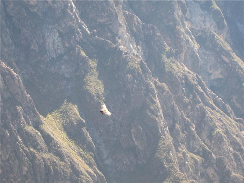 Peru 363.jpg