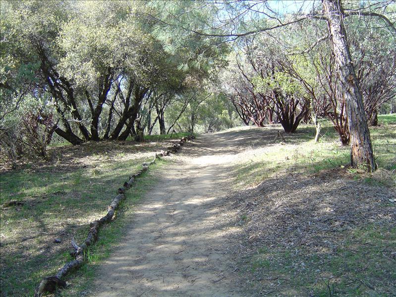 walking paths
