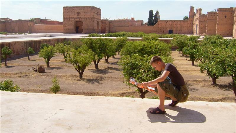 navigating the orange grove