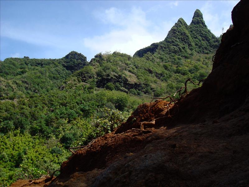 Kauai - Hiking tour, Jurassic Park feeling (was shot here on Kauai)