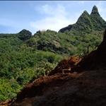 Kauai - Hiking tour, Jurassic Park feeling (was shot here on Kauai)